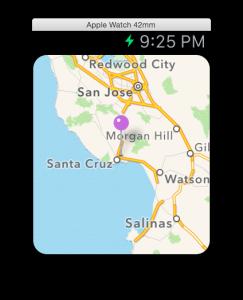 Single pin watchkit map